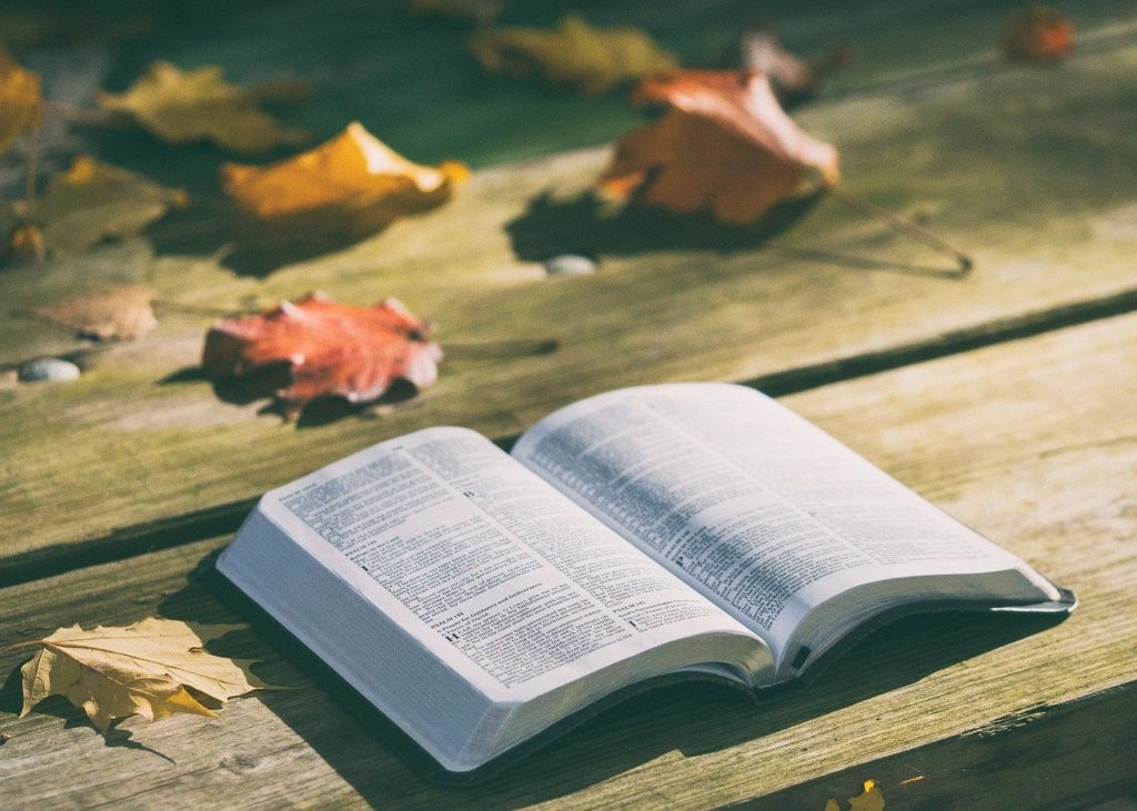 open bible sitting on picnic table with autumn leaves on table